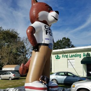 Carfox and used cars at First Landing Auto Sales